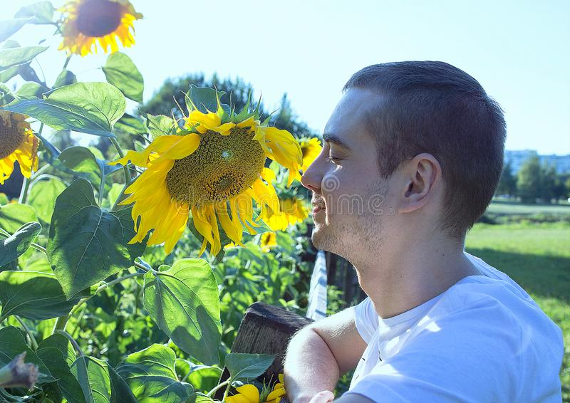 Portrait of a young guy standing by sunflower on sunset in Moscow park. stock photography