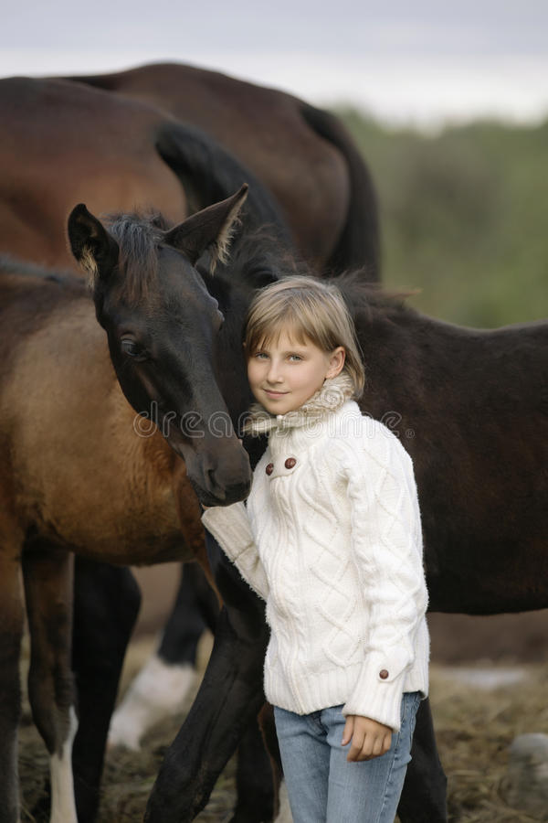 Portrait of a young happy little girl in white sweater and jeans with foal. Lifestyle royalty free stock images