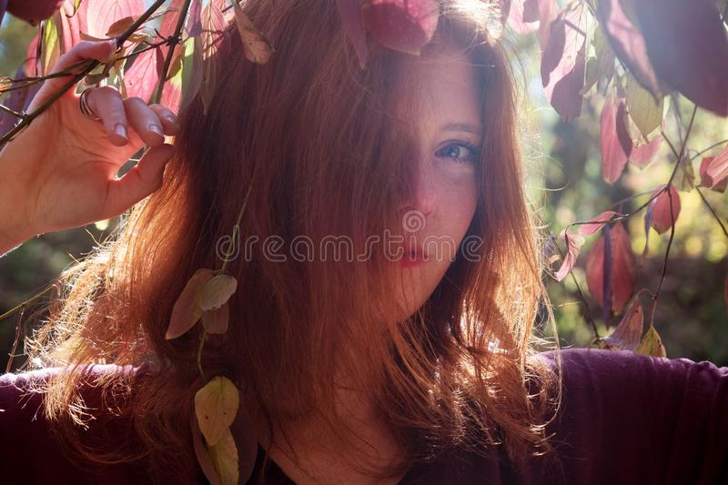 Portrait of a young lovely foxy girl with violet top, beautiful attractive fiery woman, ginger, redhead, under a bush royalty free stock image