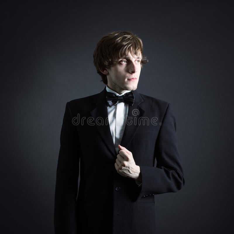 Portrait of a young male artistry. royalty free stock photography
