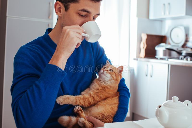 Portrait of a young man drinking tea with a cat on kitchen stock images