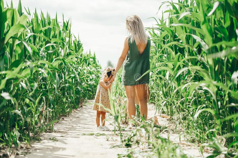 Portrait of young mother with her little daughter enjoying a summer day in the corn field royalty free stock image