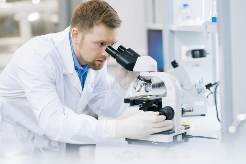 Modern Scientist Doing Research in Laboratory royalty free stock photo