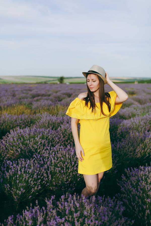 Portrait of young sensual beautiful woman in yellow dress, hat on purple lavender flower blossom meadow field outdoors stock images