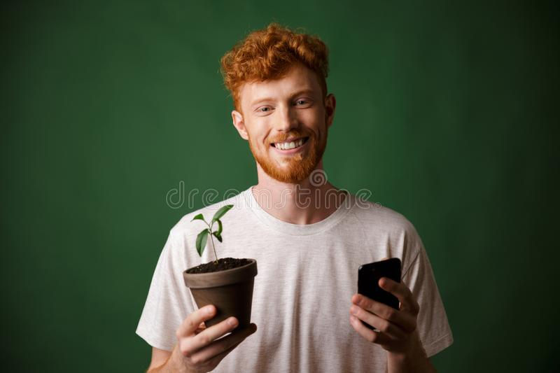 Portrait of young smiling redhead bearded young man, holding spotted plant and mobile phone. Portrait of young smiling redhead bearded man, holding spotted plant stock photos