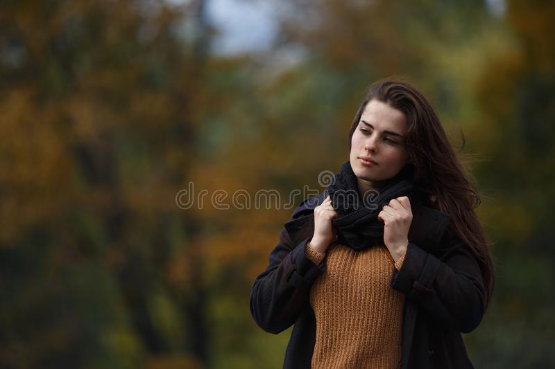 Portrait of young stylish woman wearing knitted sweater and snoo royalty free stock photo