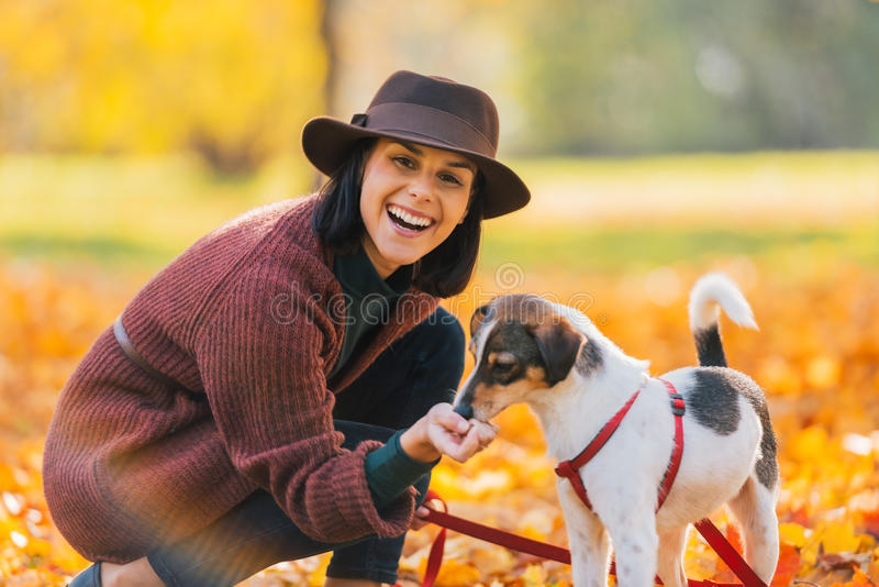 Portrait of young woman feeding dog in autumn park royalty free stock photography
