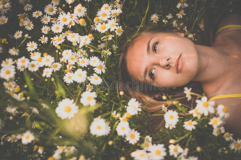 Portrait of young woman with radiant clean skin lying down amid flowers on a lovely meadow stock photography