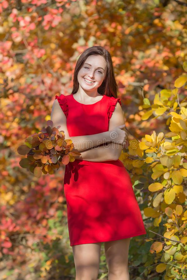Portrait of young woman in red short dress in fall forest. Female person with bouquet from autumn leafs posing embracing himself stock photo