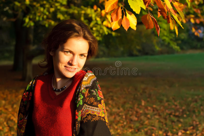 Portrait of young woman in russian shawl stock image