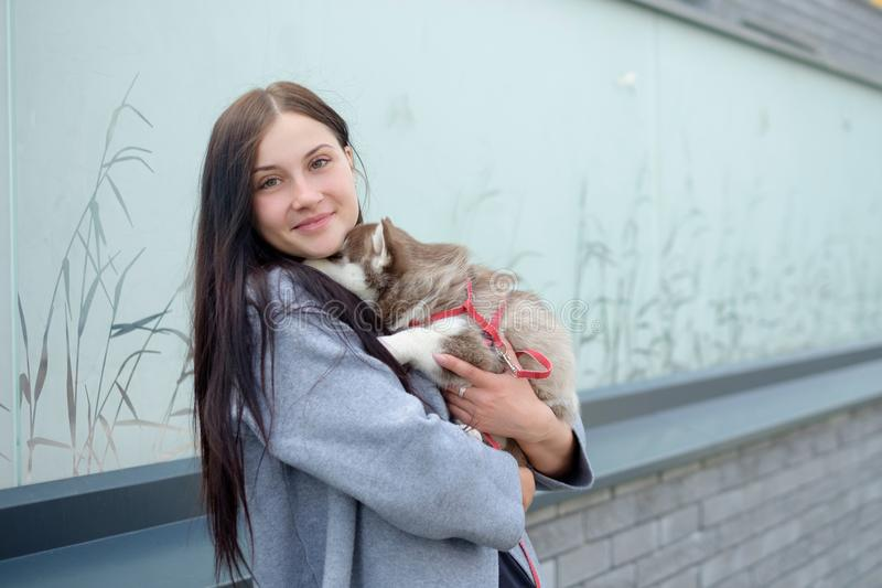 Portrait of a young women with a husky puppies stock photo