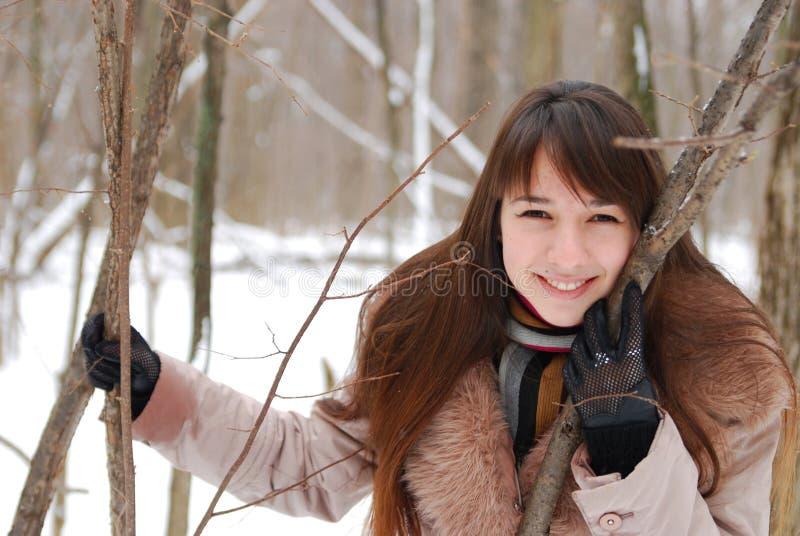 Download Portraits beautiful girl stock photo. Image of winter - 8458184