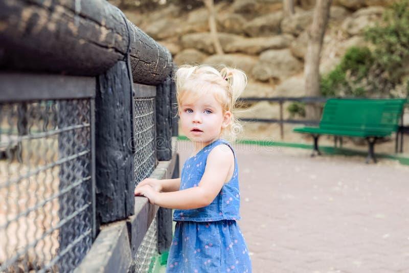 Portret śliczna mała blondy berbeć dziewczyna patrzeje kamerę i opiera na drewnianym ogrodzeniu w parkowym dziecka bezpieczeństwi zdjęcie royalty free