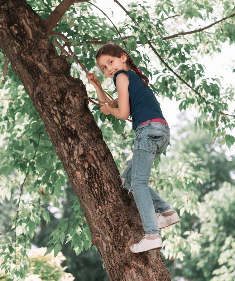 Portret śliczny dziewczyny obsiadanie na dużym drzewie na słonecznym dniu fotografia royalty free
