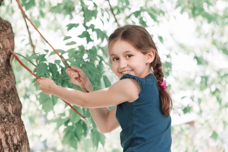 Portret śliczny dziewczyny obsiadanie na dużym drzewie na słonecznym dniu zdjęcia royalty free