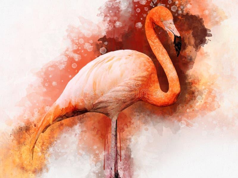 Portret фламинго, картина акварели Красное ruber Phoenicopterus фламинго, зоологическая иллюстрация, чертеж руки стоковые фото
