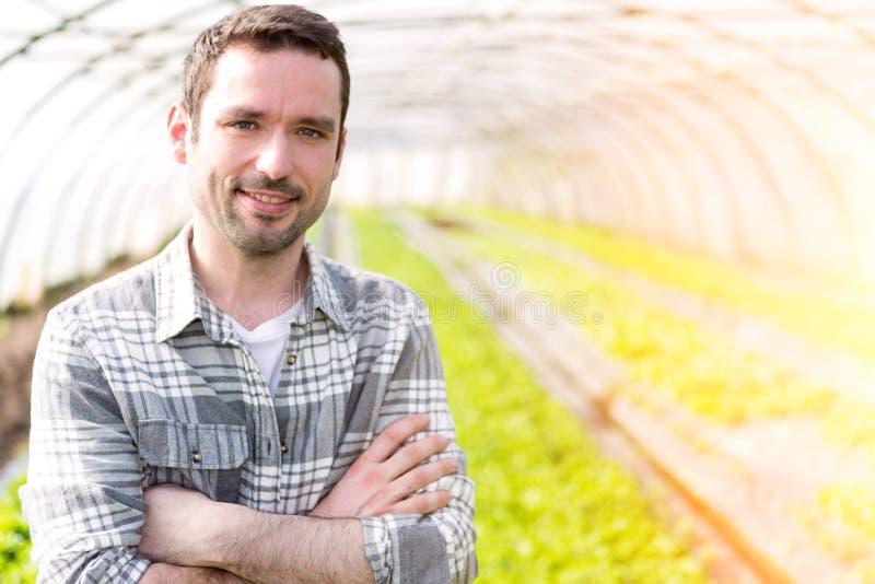 Portret atrakcyjny rolnik w szklarnianej używa pastylce obrazy royalty free
