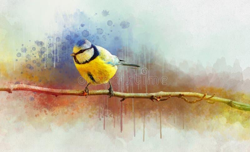 Portret B??kitnego Tit ptak, akwarela obraz Ptasia ilustracja ilustracji