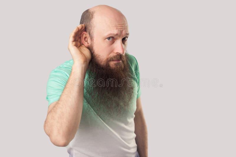 Portret baczny w średnim wieku łysy mężczyzna z długą brodą w koszulki pozycji z poważną twarzą, mienie ręką na ucho i próbą, obrazy stock