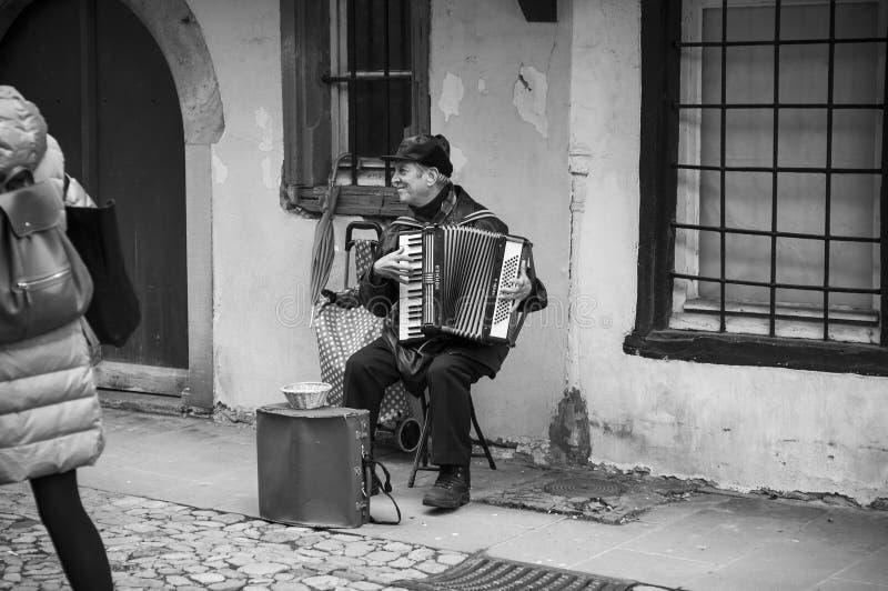 Portret bawić się w ulicie uśmiechnięty akordeonista obraz stock