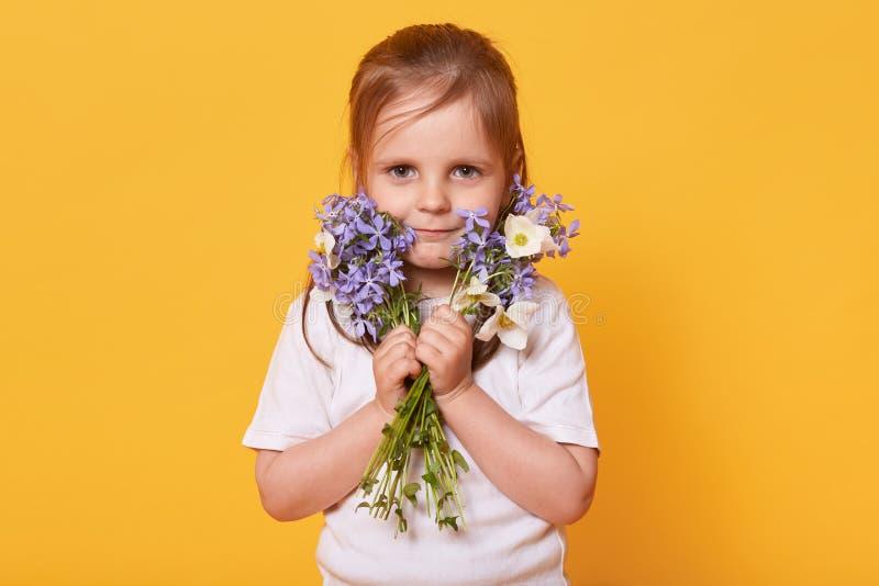 Portret berbeć dziewczyna z bukietem ogródów kwiaty odizolowywający nad żółtym pracownianym tłem, przygotowywa dla gratulować ona zdjęcie stock