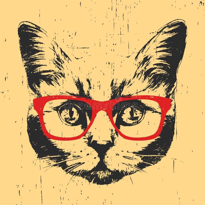 Portret Brytyjski Shorthair kot z szkłami royalty ilustracja