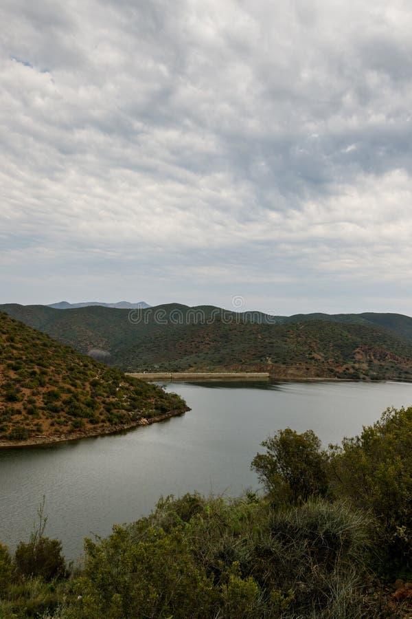 Portret - Bush-mening van de dam in Calitzdorp stock afbeeldingen