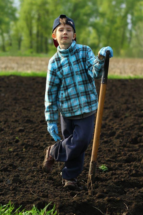 Portret chłopiec pozuje z rydlem na jarzynowym ogródzie zdjęcie stock