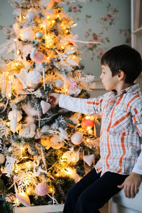 Portret chłopiec siedzi blisko s jedlinowego drzewa zdjęcie stock