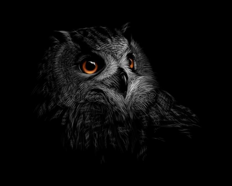 Portret długoucha sowa na czarnym tle ilustracja wektor