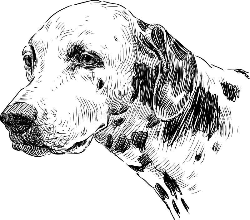 Portret dalmatian royalty ilustracja