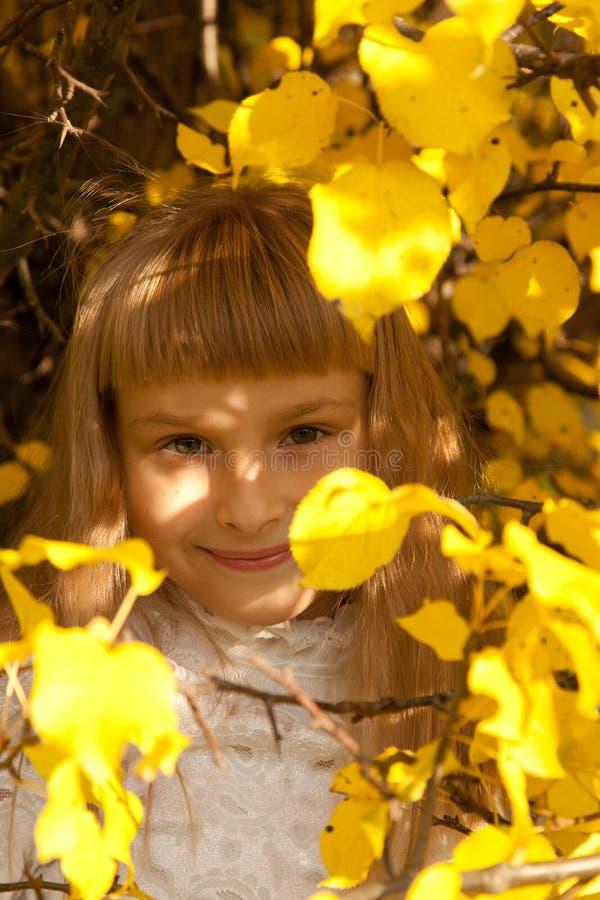Portret de la muchacha en otoño imagenes de archivo