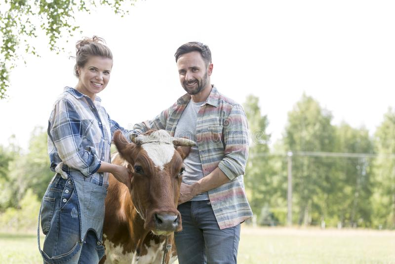 Portret die van glimlachend paar zich met koe bij landbouwbedrijf bevinden royalty-vrije stock foto