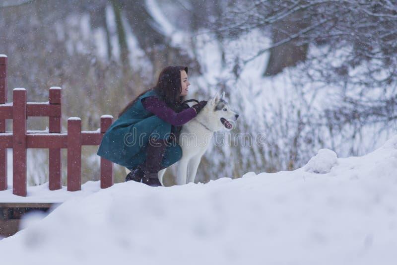 Portret Dosyć Spokojna Kaukaska brunetka Z Jej Łuskowatym psem zdjęcia royalty free