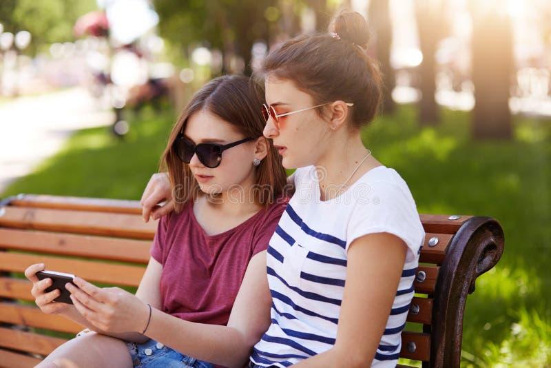 Portret dwa czułej dziewczyny siedzi na ławce przy miejscowy zieleni przestrzenią, ogląda prowokującego wideo i dyskutuje skład o obrazy royalty free