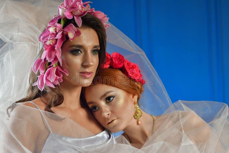 Portret dwa wspania?ej damy z dzikimi kwiatami elegancja Wianek fantazja zdjęcie stock
