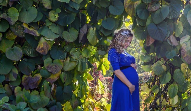Portret een mooie jonge blonde zwangere vrouw royalty-vrije stock foto