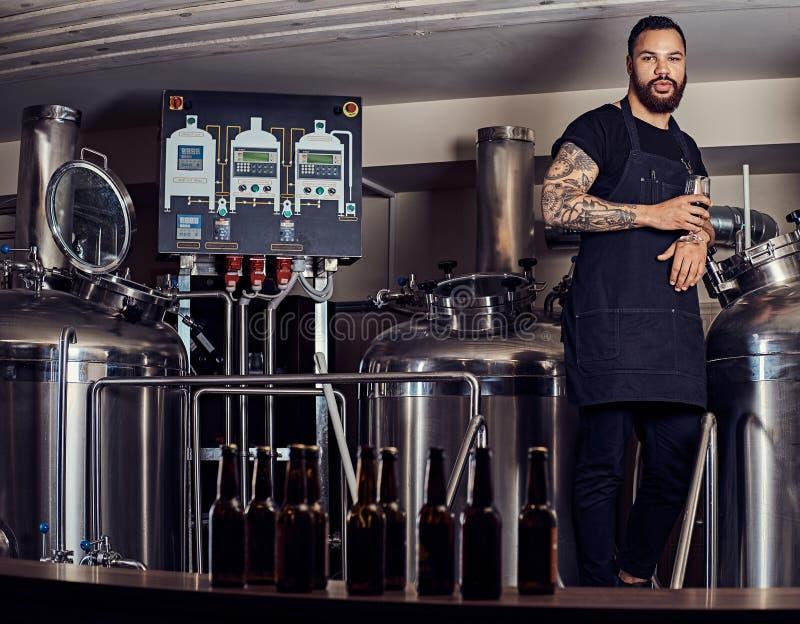 Portret elegancka brodata tatuująca zmrok skinned samiec trzyma szkło piwo, stoi za kontuarem w browarze fotografia stock