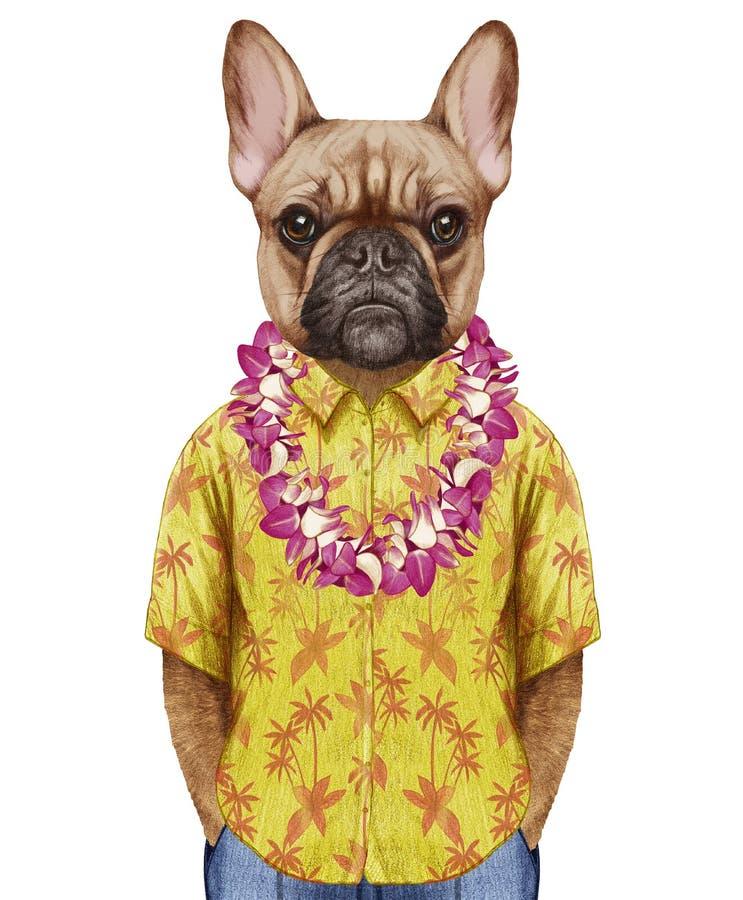 Portret Francuski buldog w lato koszula z Hawajskimi Lei ilustracji