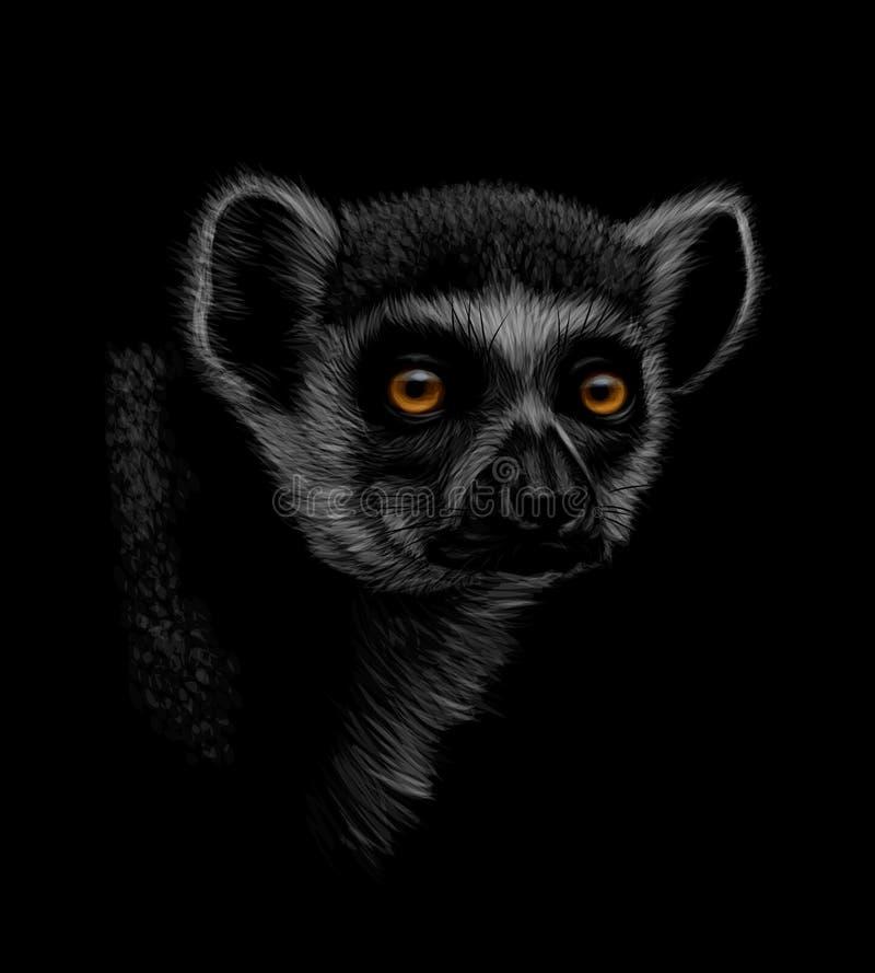 Portret głowa ogoniasty lemur na czarnym tle ilustracja wektor