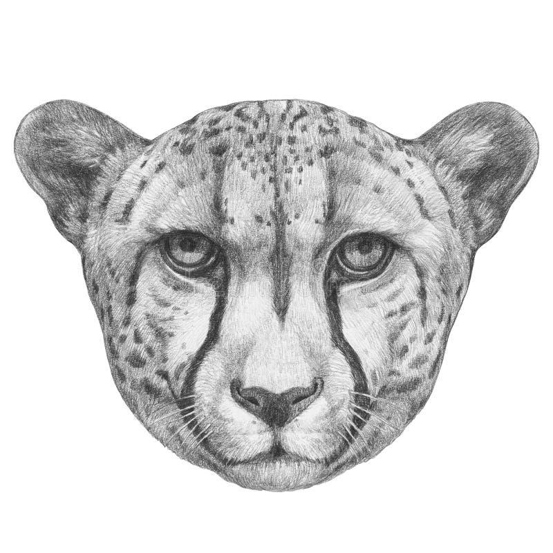 Portret gepard ilustracja wektor