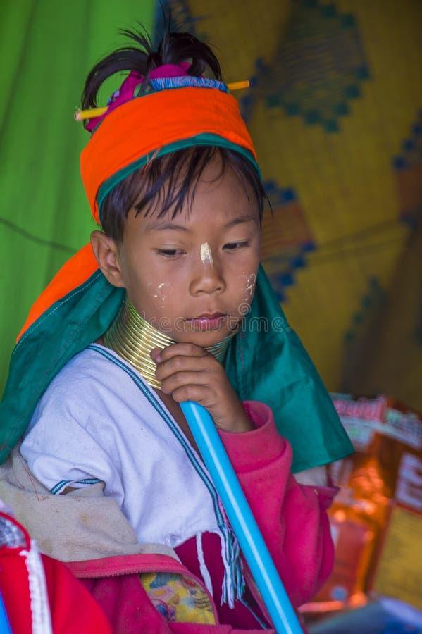 Portret Kayan plemienia kobieta w Myanmar fotografia royalty free