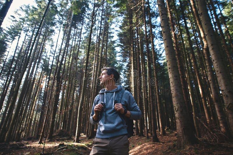Portret mężczyzny wycieczkowicza odprowadzenie na śladzie w drewnach zdjęcie stock