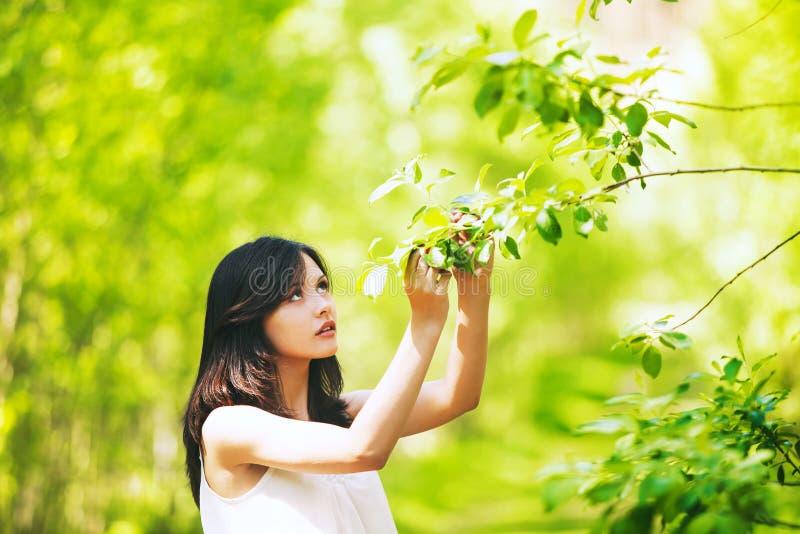 Portret młoda kobieta na naturalnym zielonym tle zdjęcie royalty free