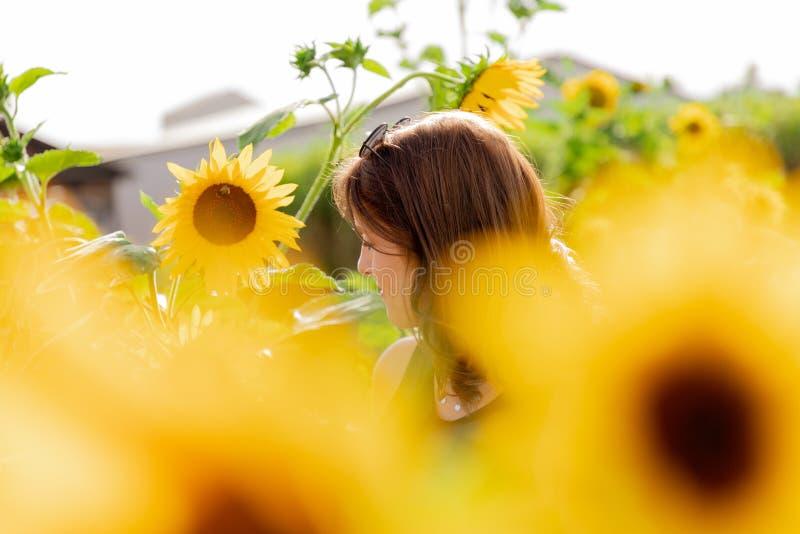 Portret młoda kobieta w słonecznikowym polu fotografia stock
