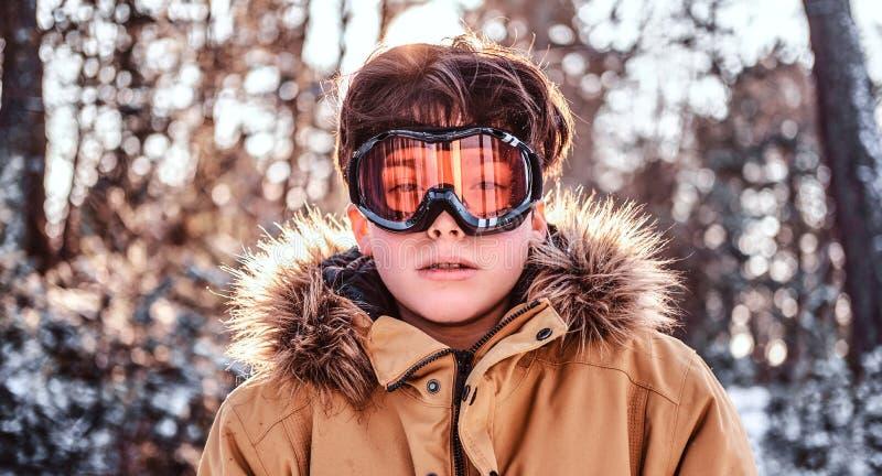 Portret młody snowboarder stoi w śnieżnym lesie podczas zmierzchu ubierał w ciepłych odzieżowych i ochronnych gogle zdjęcia stock