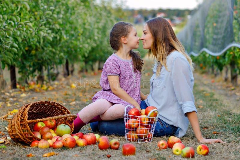 Portret mała dziewczynka i piękna matka z czerwonymi jabłkami w organicznie sadzie Szczęśliwy kobiety i dzieciaka córki zrywanie fotografia royalty free