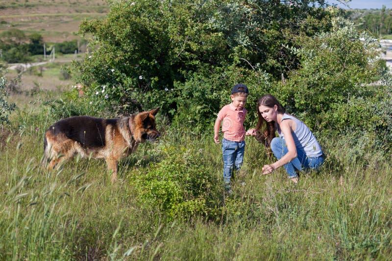 Portret matka z młodym psem w lesie i synem zdjęcie royalty free