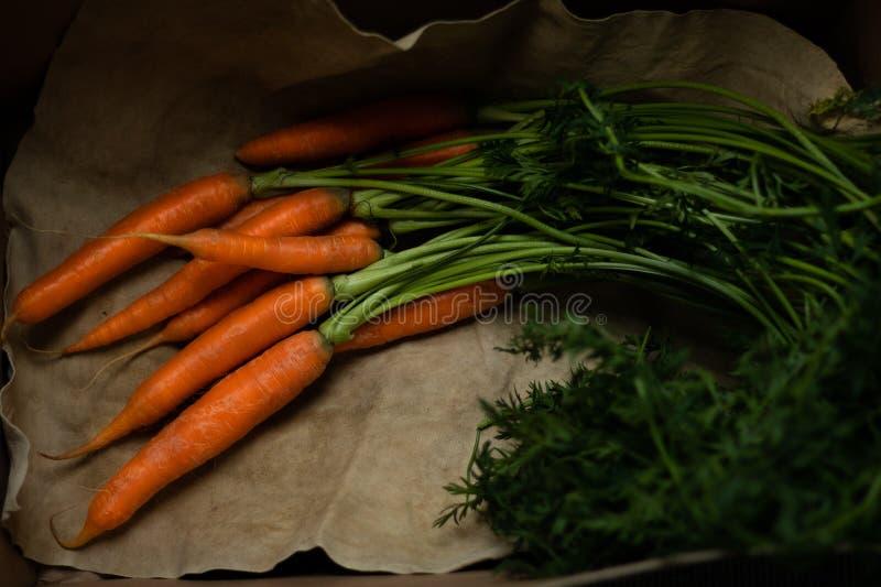 Portret met wortelen stock afbeeldingen