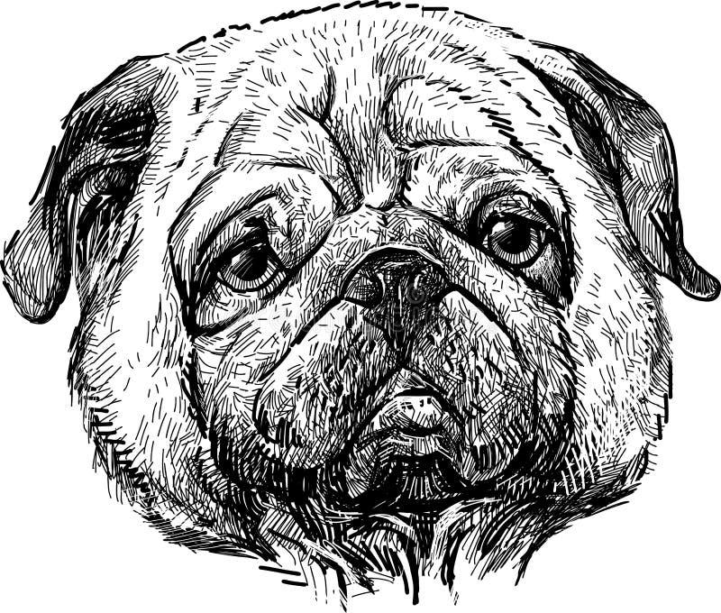Portret mops ilustracji